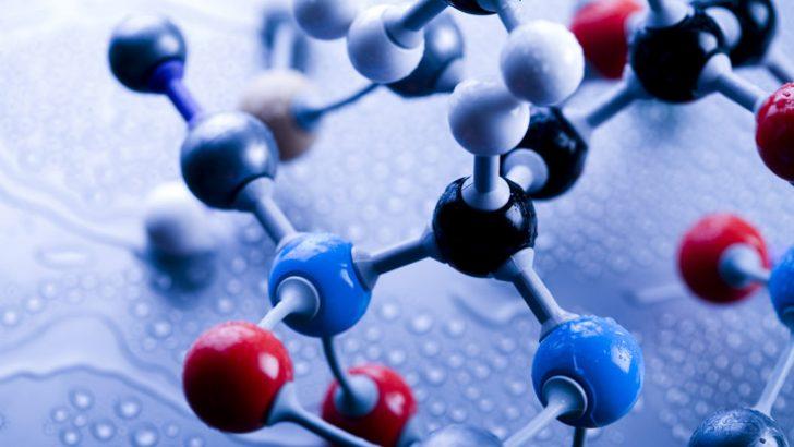 Metabolizma Ve Biyokimyasal Olaylar