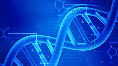 Genetik ve Biyomühendislik