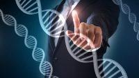 Genetik Mühendisliği Ve Çalışma Alanları