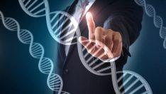 Genetik Mühendisliği Nedir? Ne Değildir?