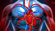 Ani Hava Değişimi Ve Kalp Krizi