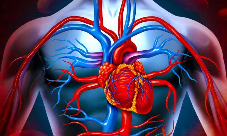 kalp-damar-cerrahisi