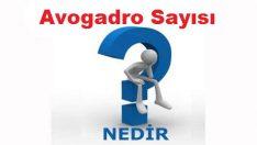 Avogadro Sayısı Nedir?