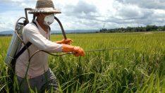 Pestisit Nedir? Zararları Nelerdir?