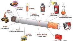 Sigaranın İlk İçimde Zararları