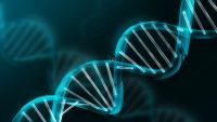 Önce DNA Mı Yoksa RNA Mı?