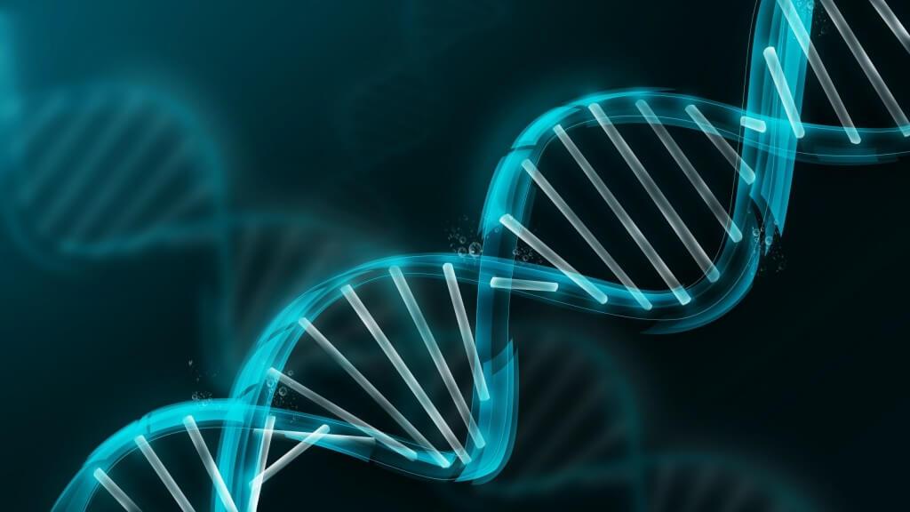 Photo of Önce DNA Mı Yoksa RNA Mı?