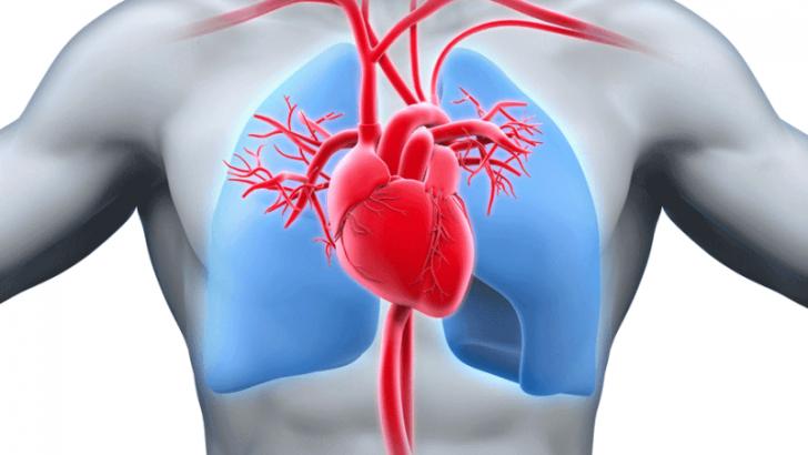 Ailesel Hiperkolesterolemi Nedir?