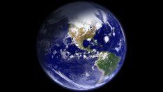 """Bilim adamları: """"Dünya altıncı kitlesel yok oluşa doğru ilerliyor."""""""