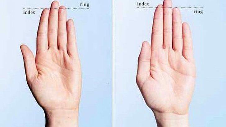 Parmak Oranınız Kişiliğinizi Yansıtıyor