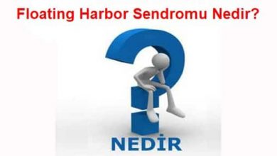 Photo of Floating Harbor Sendromu Nedir?