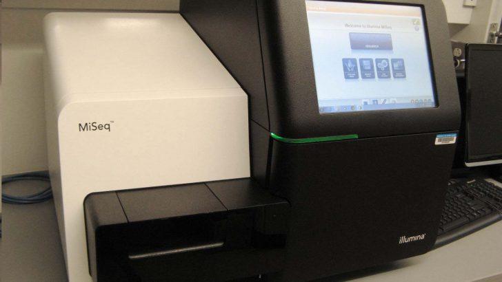 illumina MiSeq Cihazı İle Yeni Nesil DNA Dizileme
