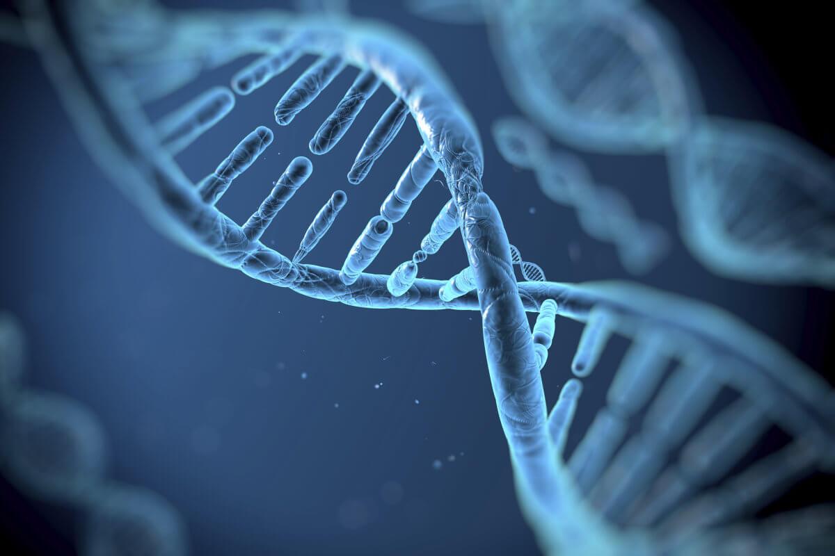 Photo of Gen Ekspresyonu Nedir?
