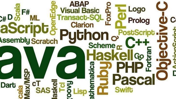 Java Mı Pyhton Mu Yoksa C Programalama Dili Mi ?