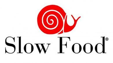 Photo of Slow Food Nedir?