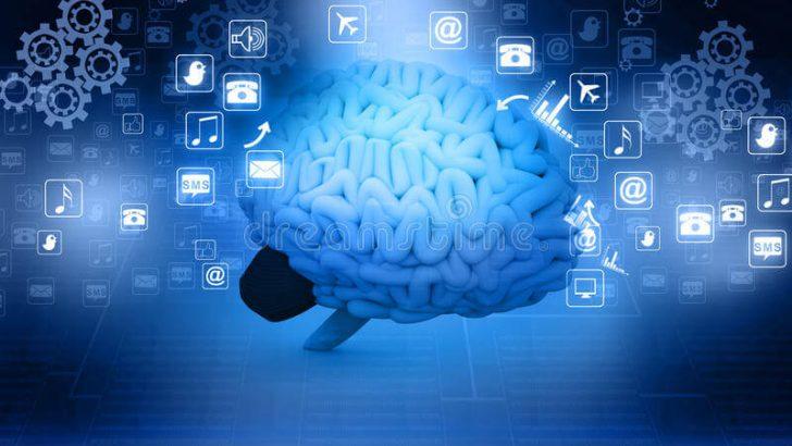 Wits Üniversitesi'nde İlk Kez Beyin İnternete Bağlandı
