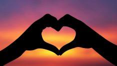 Yaşlı Kalbin Gençleştirilmesinin Formülü Bulundu!