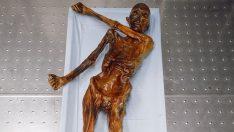 Buz Adam Ötzi'nin Gizemleri