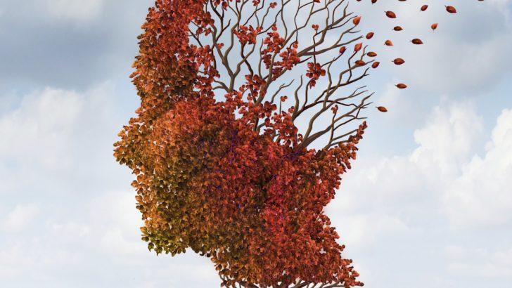 Alzheimer Hastalığında APOE Protein Etkisi