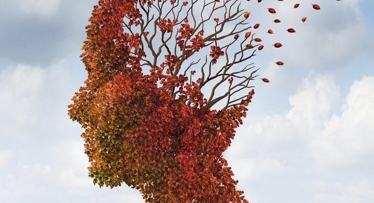 Photo of Alzheimer Hastalığında APOE Protein Etkisi