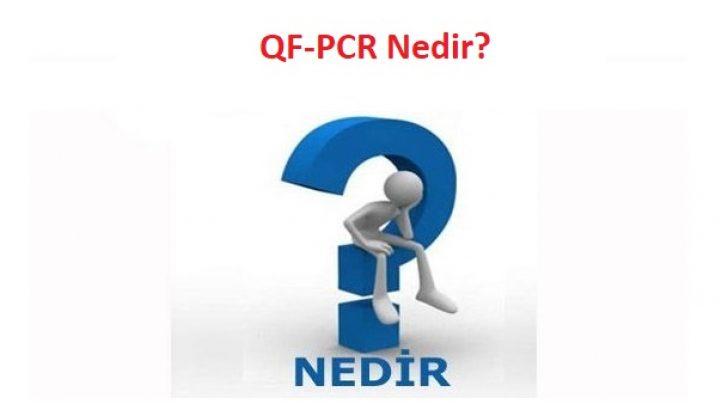 QF-PCR Nedir?