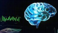 Bitkisel Hayattaki Hasta 15 Yıl Sonra Elektrik Dalgaları İle Uyandı