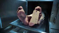 Öldükten Sonra Beyinde Neler Oluyor?