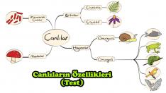 Canlıların Özellikleri (Test)