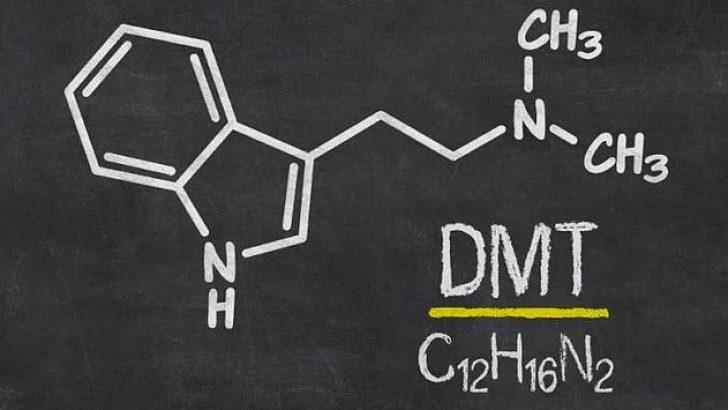 Ruh Molekülü Nedir? (DMT)