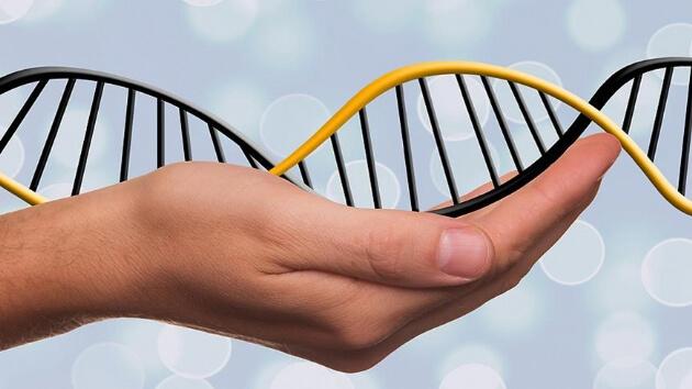 DNA robotları