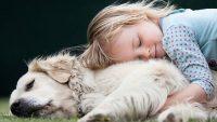 Çocuklara Hayvan Sevgisi Aşılamanın 6 Yolu