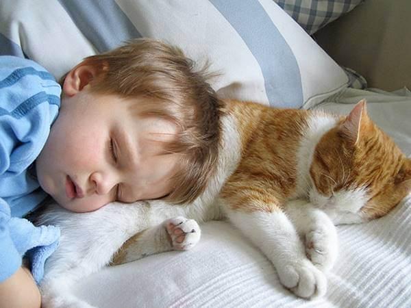 çocuklar rüya görür mü