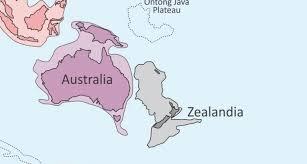 zealandia harita