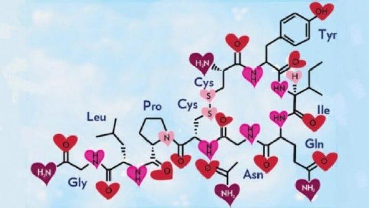 Adrenalin (Epinefrin) Hormonu Nedir?