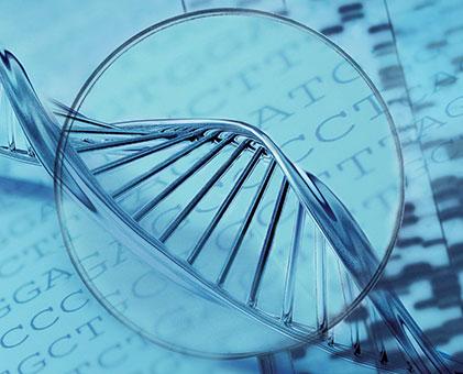 poligenetik-kalitim