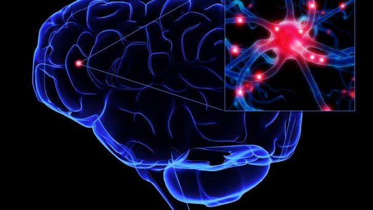 Nöroblastoma Nedir?