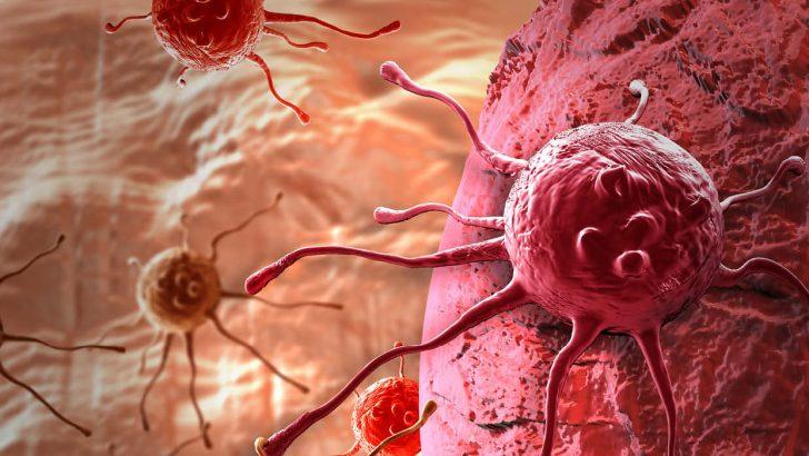Kanserde Kalıtsal Yatkınlık ve Diğer Faktörler