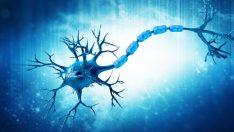 Spinal Müsküler Atrofi (SMA) Nedir?