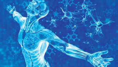 Photo of İnsan Genom Projesi'nin Katkıları