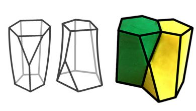 Photo of SCUTOID