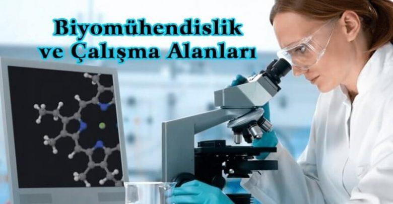 Biyomühendislik ve Çalışma Alanları