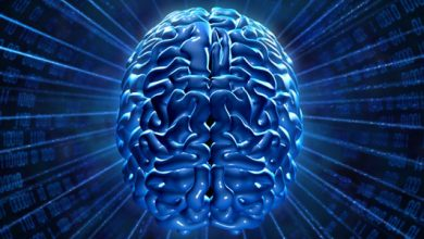 Online Beyin