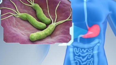 Photo of Helicobacter Pylori Tedavisinde Yenilikler