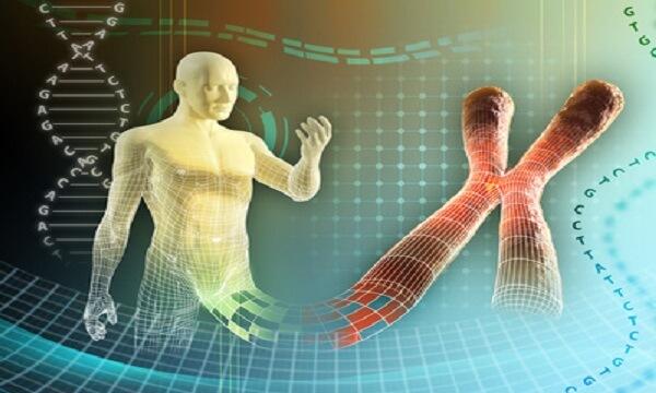 proteomik nedir