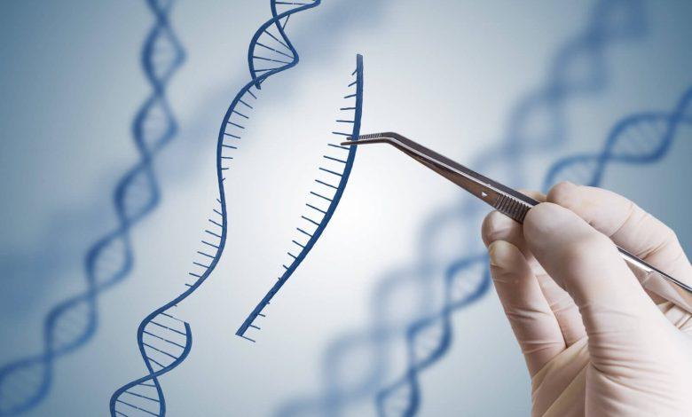 Genetik Bozukluklar