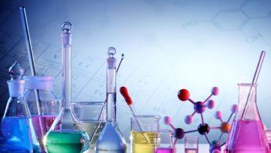 Moleküler Toksikoloji Nedir?