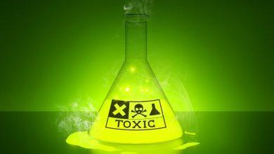 Toksik Bileşenlerin Genetik Üzerine Etkisi